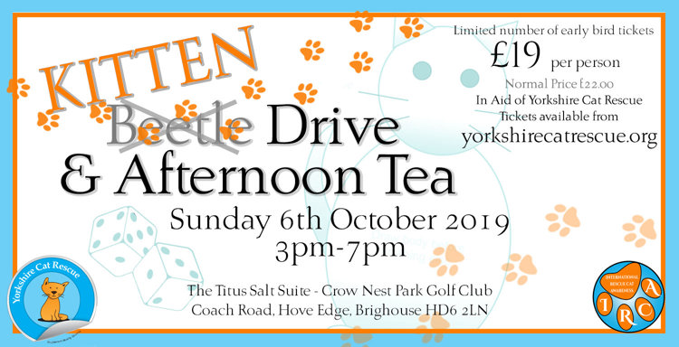 Yorkshire Cat Rescue Kitten Beetle Drive Afternoon Tea 6 October