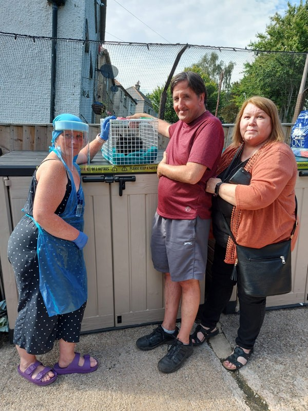 Cat reunited with owners from Yorkshire Cat Rescue