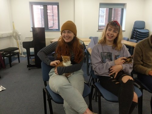 Yorkshire Cat Rescue at Leeds University with students and kittens