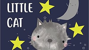 Fluffy Little Cat - a story book supporting Yorkshire Cat Rescue