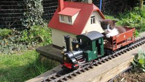 Kittens playing on a train at Yorkshire Cat Rescue