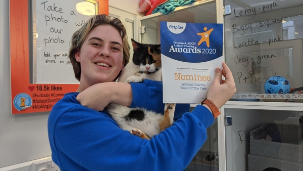 Cat Care Assistant at Yorkshire Cat Rescue with award