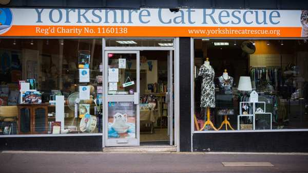 Keighley charity shop Yorkshire Cat Rescue
