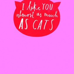 Because Cats card at Yorkshire Cat Rescue I like You almost as much as CATS