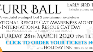 Charity ball at Yorkshire Cat Rescue 28 March 2020