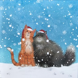 Christmas Kittens - cards at Yorkshire Cat Resuce