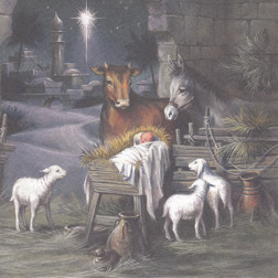 Christmas Card from Yorkshire Cat Rescue - Nativity scene baby Jesus and animals