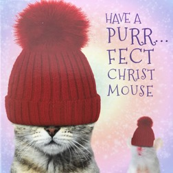 Purrfect Christmouse - Christmas cards at Yorkshire Cat Resuce