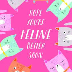 Because Cats - Get well card at Yorkshire Cat Rescue.  Lots of cats on a pink background