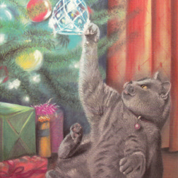 Christmas Card from Yorkshire Cat Rescue - grey tabby cat and Christmas angel