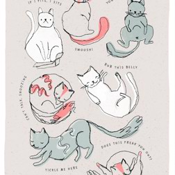 Because Cats - card at Yorkshire Cat Rescue lots of cats in funny positions