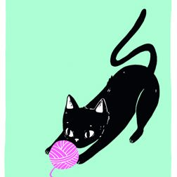 Because Cats card at Yorkshire Cat Rescue black kitten chasing a ball of wool