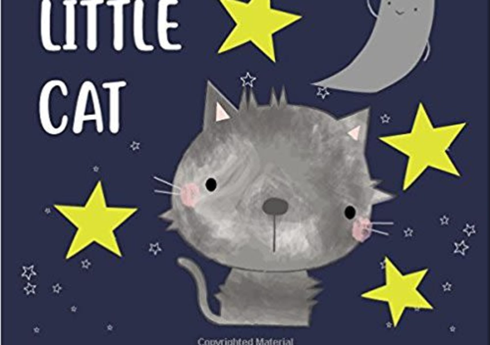 The Fluffy Little Cat Book