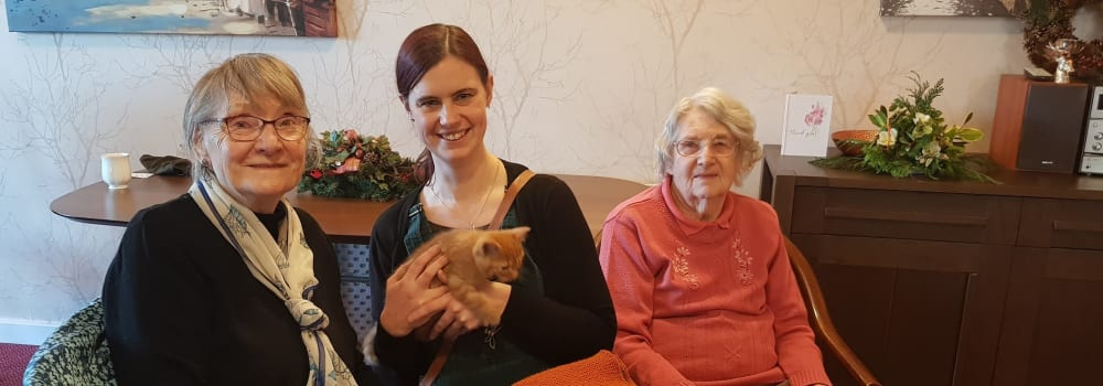 Foster mum and foster kitten from Yorkshire Cat Rescue at a residential home
