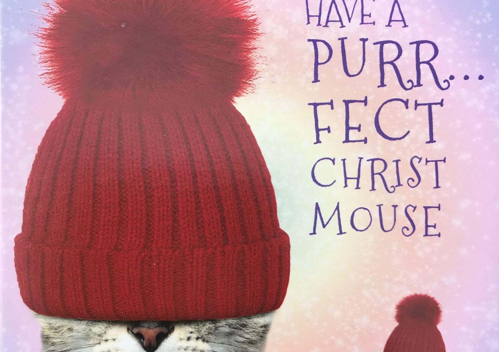 Have a Purrfect Christmouse